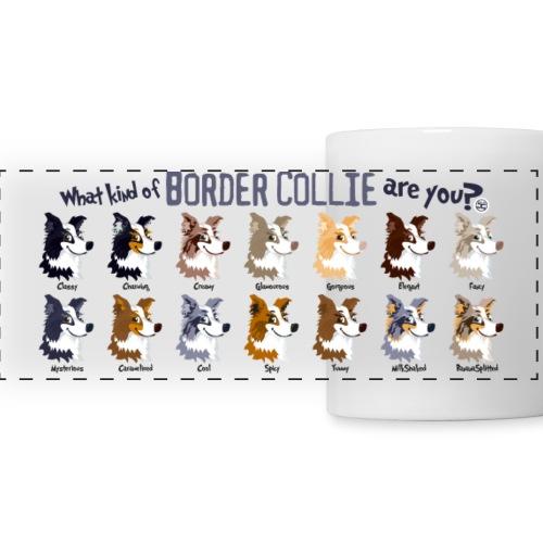 What Kind Of Border? - Panoramic Mug