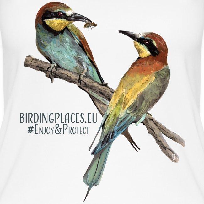 Bee-eater Birdingplaces