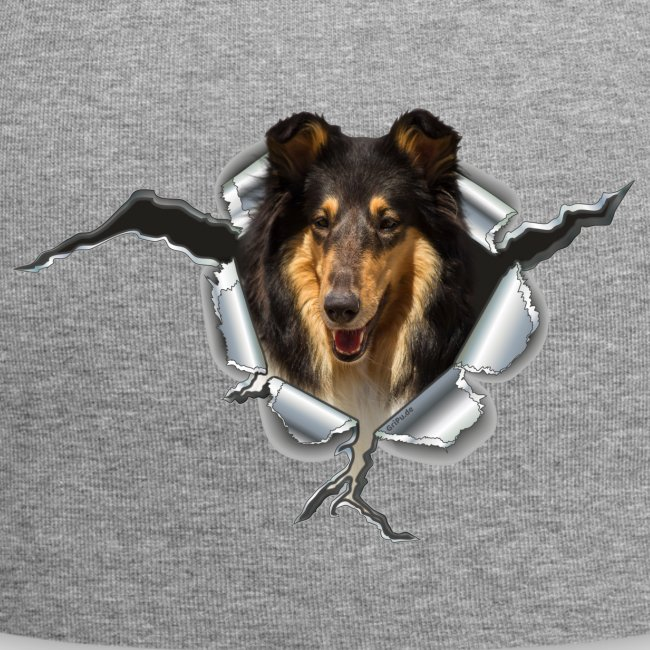 Collie Blue Merle im Metall-Loch