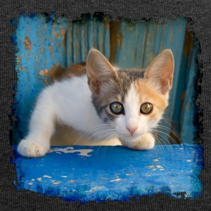 Sweet young kitten looking out of old blue door - Jersey Beanie