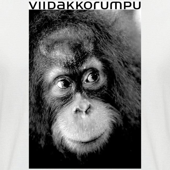 apina logolla 3