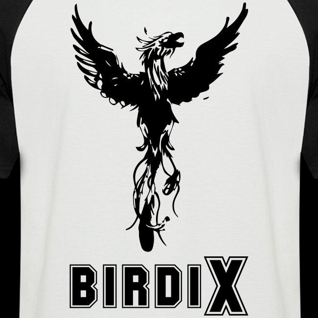 LOGO birdix 30x35cm