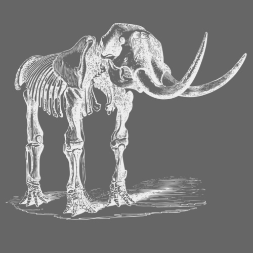 Skeleton Mammoth Elephant White - Turnbeutel