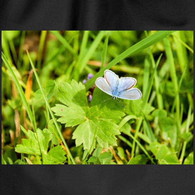 Blue Butterfly by EmilyLife®