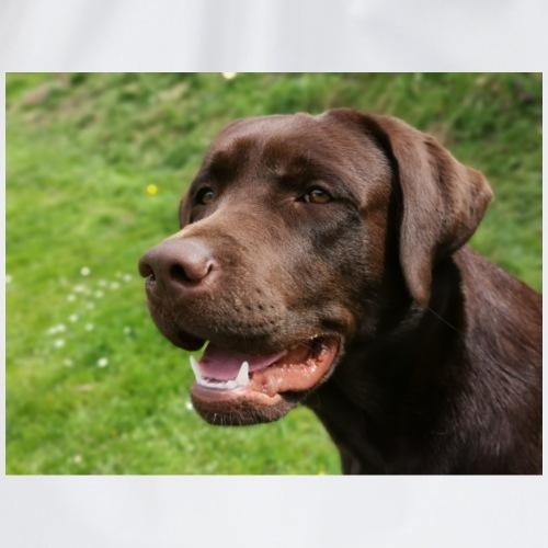 Labrador Kopf2 - Turnbeutel