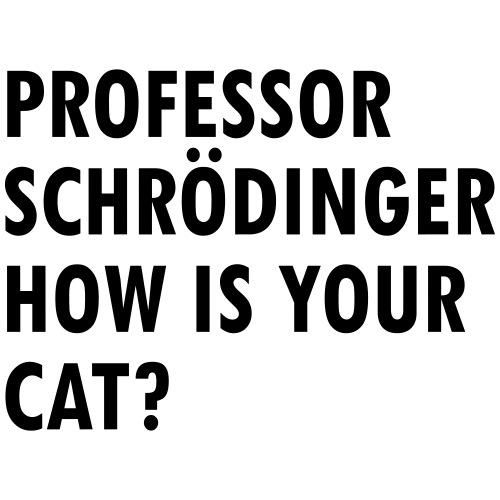Schroedingers cat - Drawstring Bag