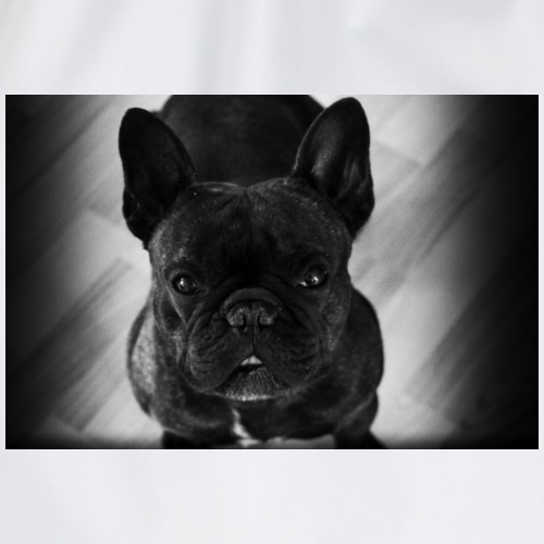 French Bulldog - Sportstaske