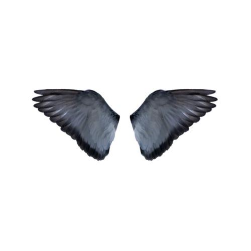 Blaue Flügel Slat - Turnbeutel