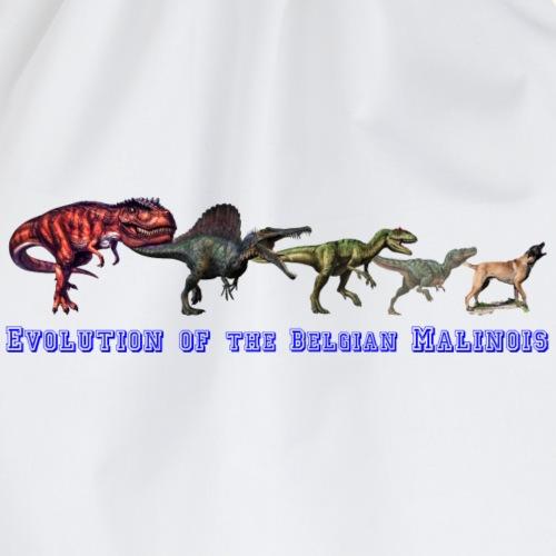 Evolution of the Belgian Malinois