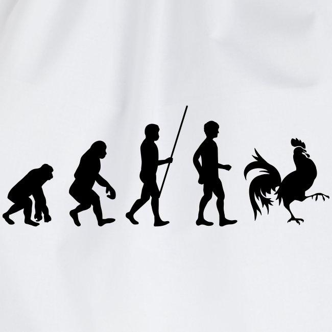évolution wallonie