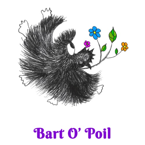 Bart O' Poil - Sac de sport léger