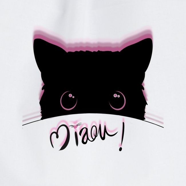 gato miaou