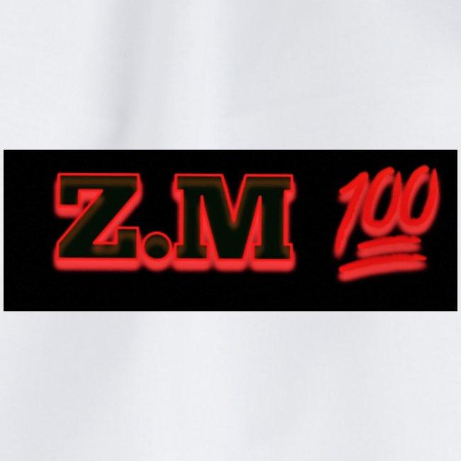 Z.M 100