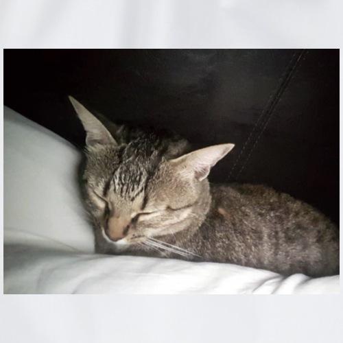 Katzen Liebhaber Und Leidenschaft - Turnbeutel