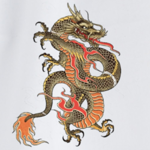 Dragon - Mochila saco