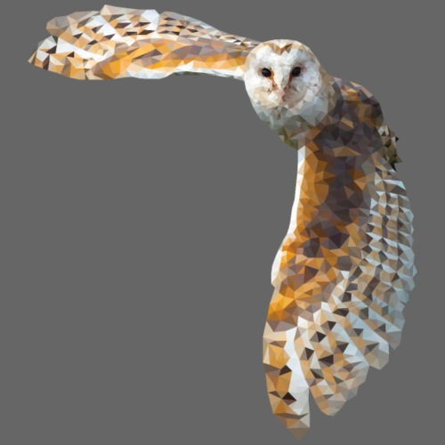 chouette barn owl low poly une rousse a la rescous - Sac de sport léger
