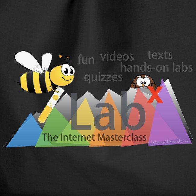 iLabX - The Internet Masterclass
