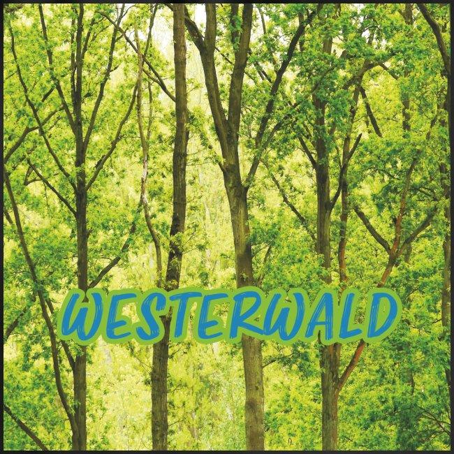 Wald, Wald und nochmals Wald.