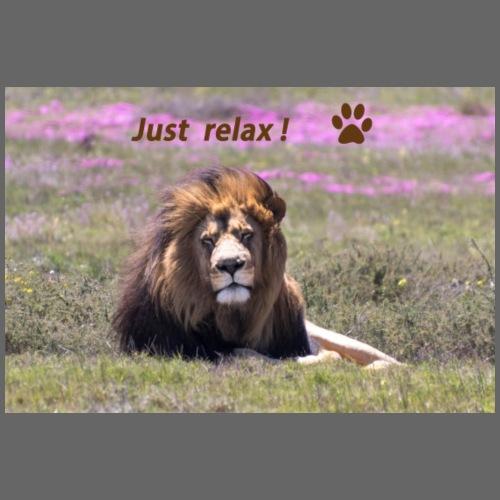 Geschenkidee Löwe Mach mal Pause! Just relax! Foto