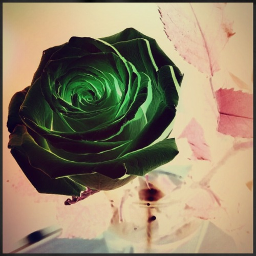 Green Rose - Turnbeutel