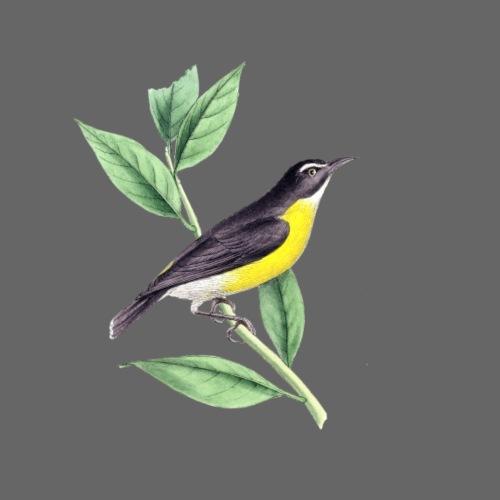 bird yellow-black - Turnbeutel