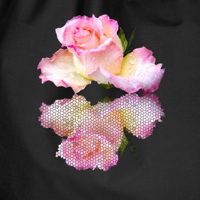 pinke Rose mit Regentropfen im Spiegel, rosa Rosen
