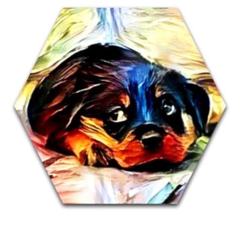dog2 - Drawstring Bag