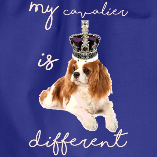 my cavalier is different - Drawstring Bag