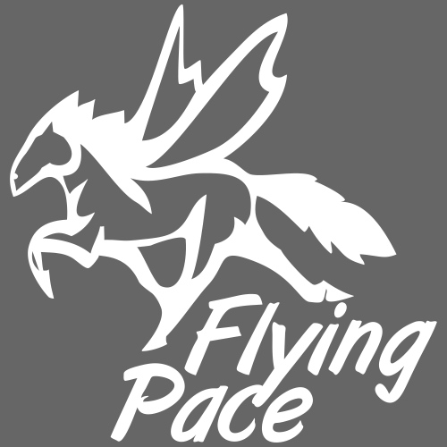FLYING PACE - MT10