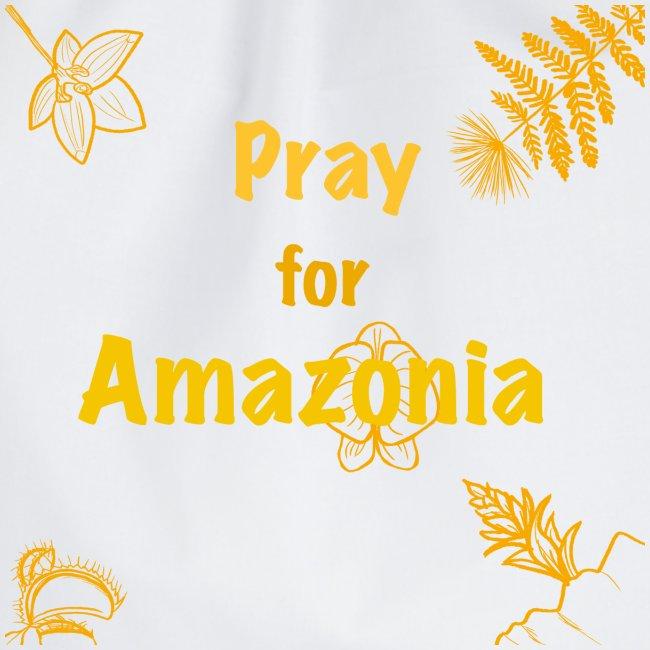 Pray for Amazonia