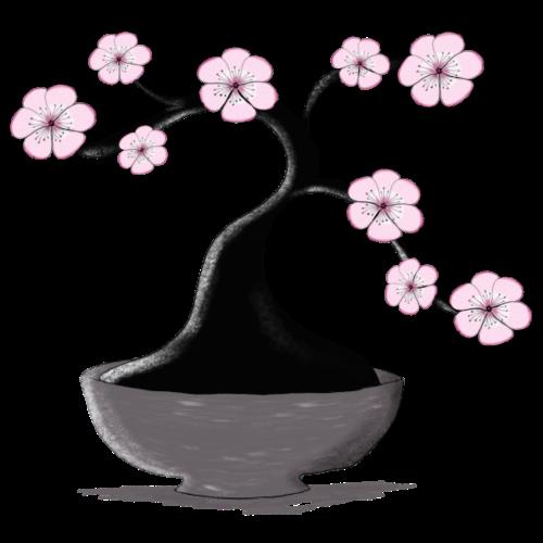 Kirschblueten Bonsai - Turnbeutel