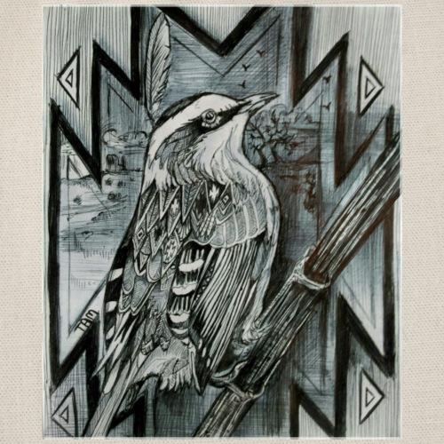 Oiseau navajo1