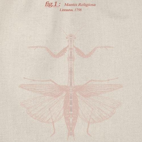 mantis religiosa - rose - Sac de sport léger