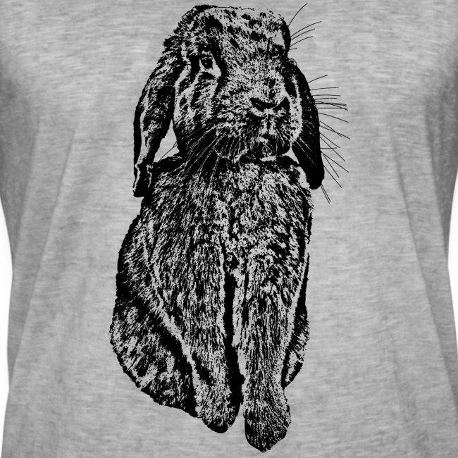 Hase Kaninchen Widder NHD Osterhase Schlappohr
