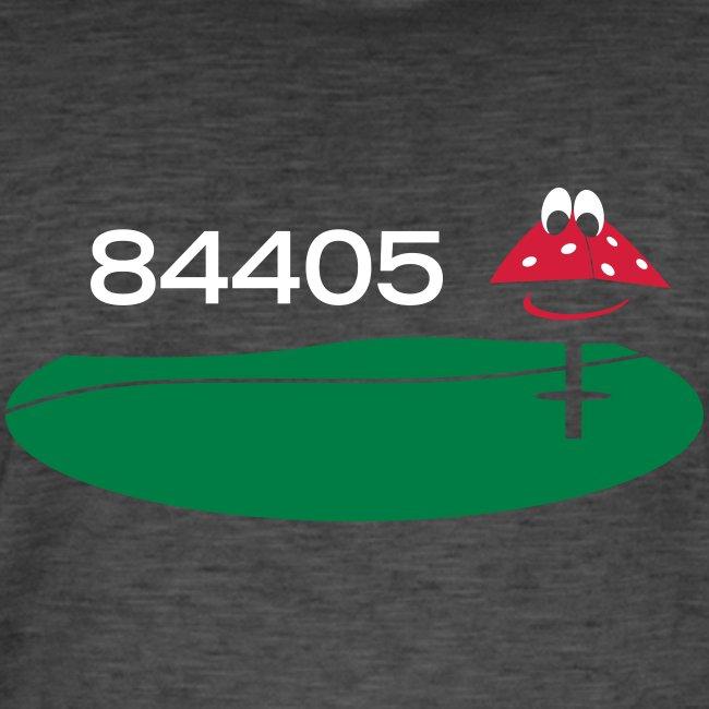 84405