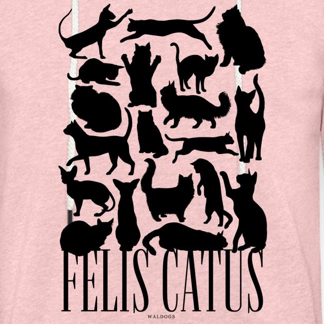 Felis Catus Black