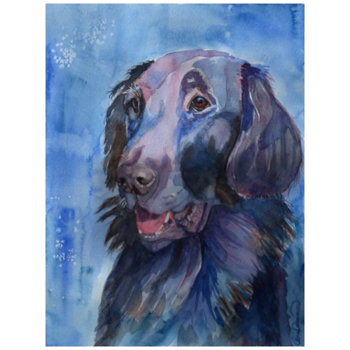 flatcoated retriever - watercolor - Let sweatshirt med hætte, unisex
