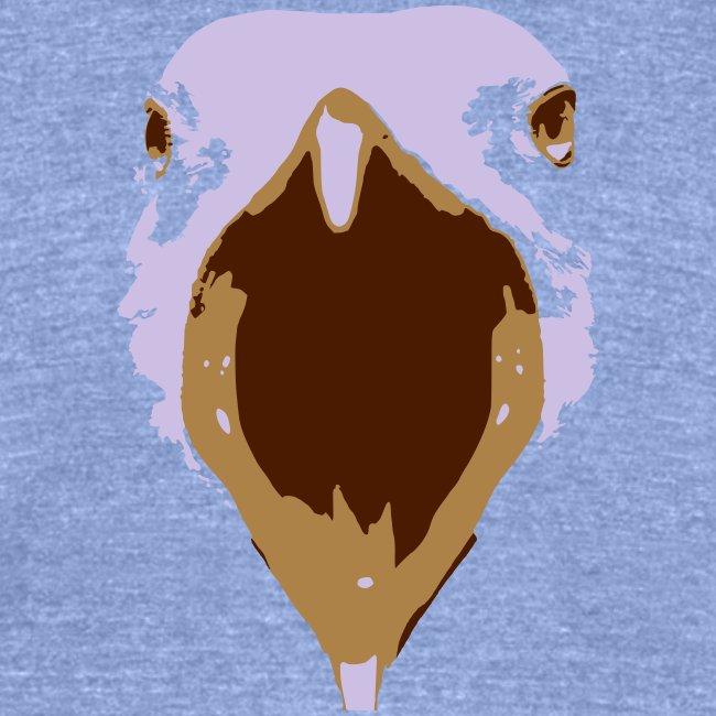 Ballybrack Seagull