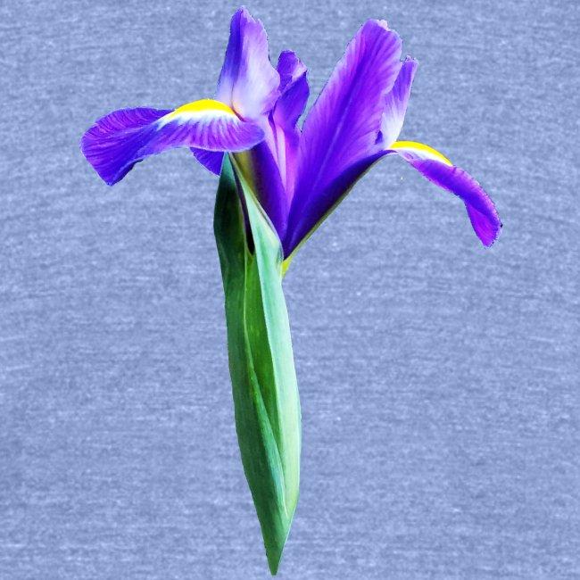 TIAN GREEN Garten - Iris 2020 02