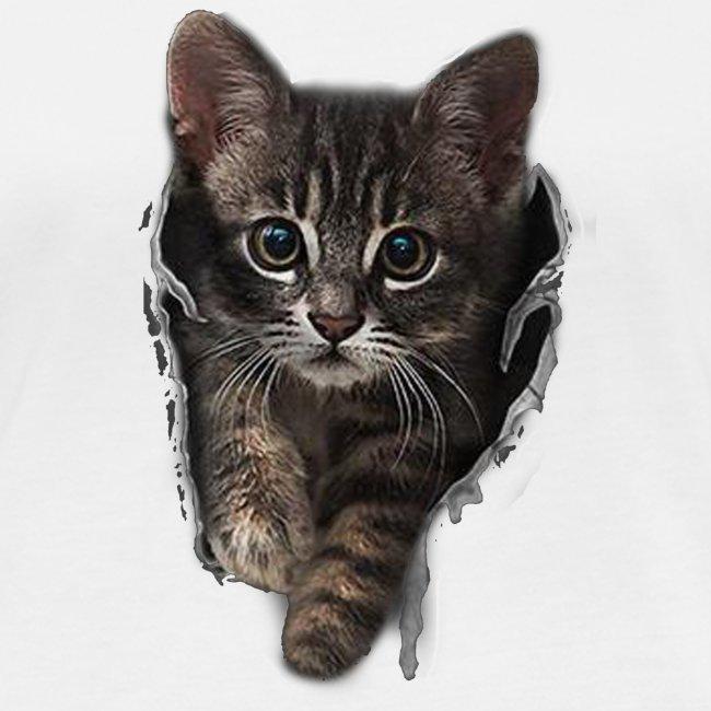 Vorschau: Katze Riss - Frauen Bio-Langarmshirt von Stanley & Stella
