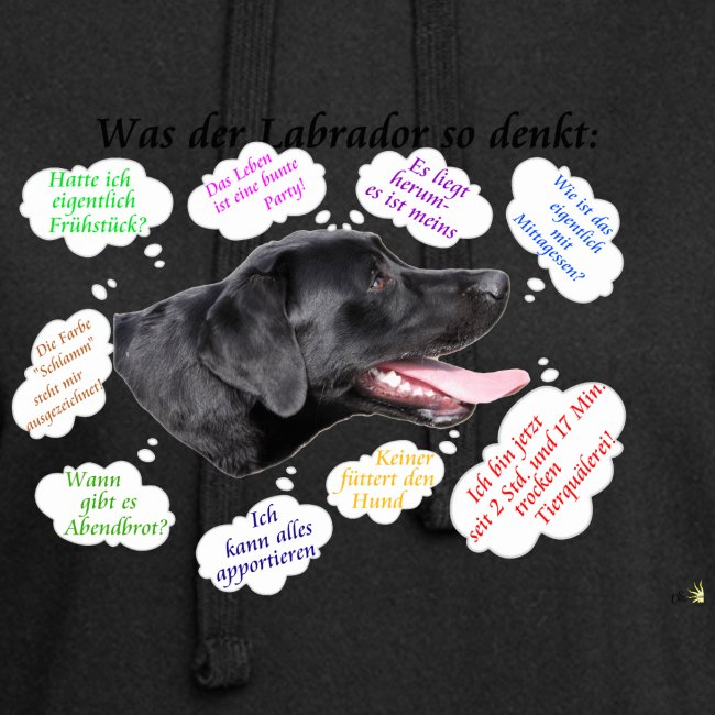 Labrador Gedanken