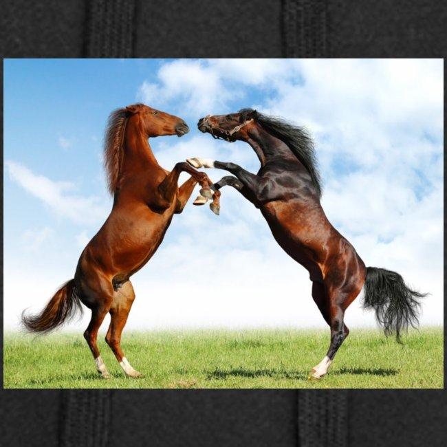 kaksi hevosta