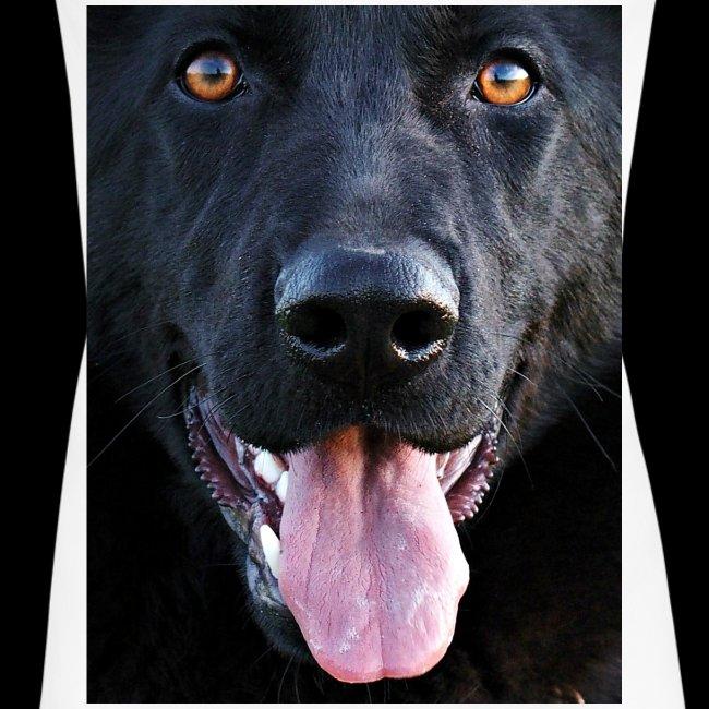 black-german-shepherd-lar