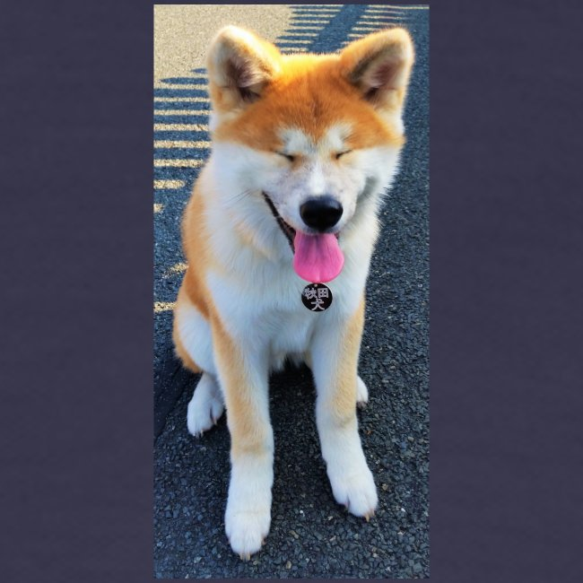 Akita Yuki