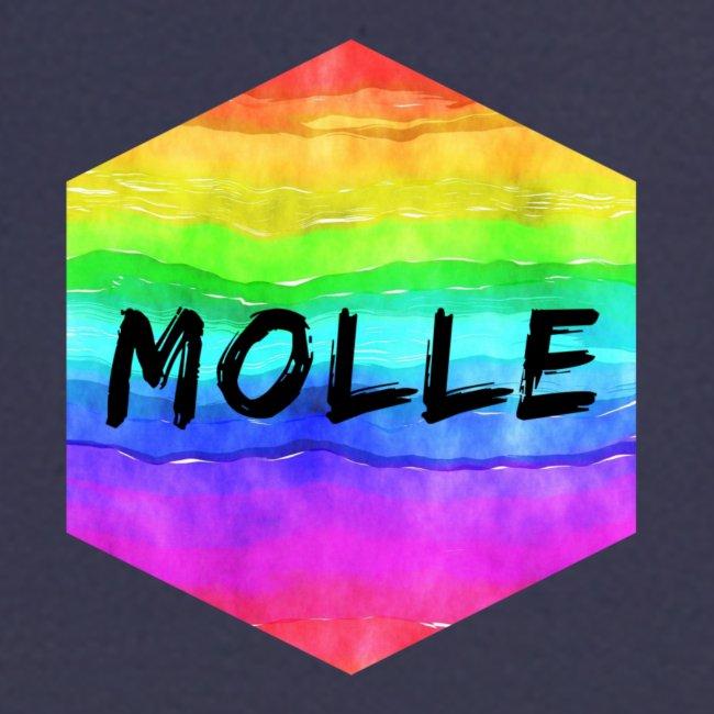 molle rainbow