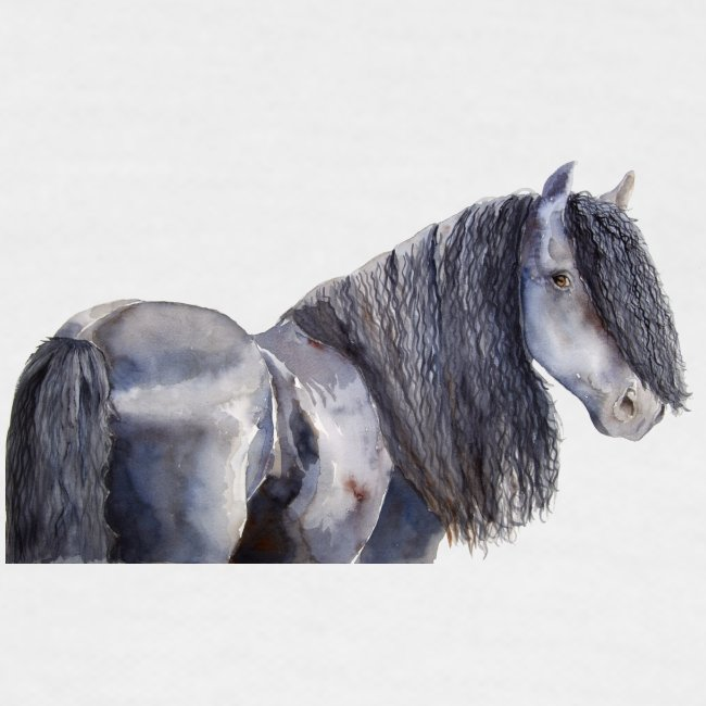 friesian horse color