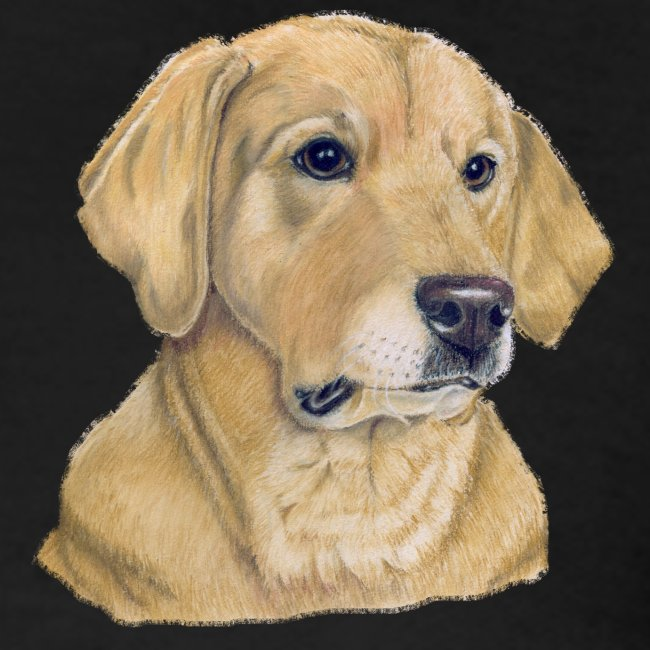 labrador yellow - pastel