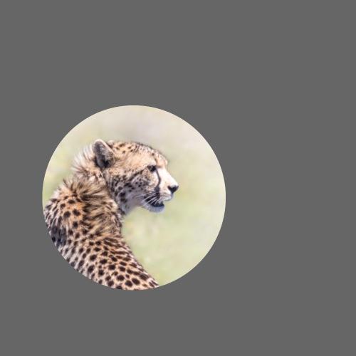 Geschenkidee Gepard - Buttons klein 25 mm (5er Pack)