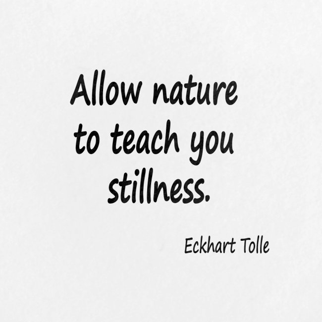 Nature for Stillness