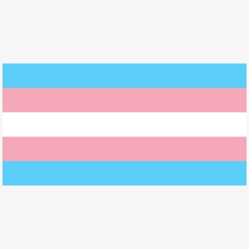 Bandera trans. LGBT - Paquete de 5 chapas pequeñas (25 mm)